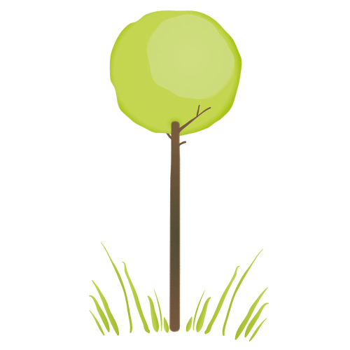 Baum Beratung