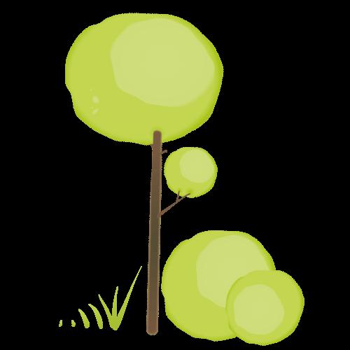 Baum Entwicklung